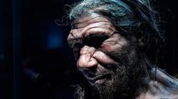 Nghiên cứu sốc về tuổi thọ tự nhiên của con người