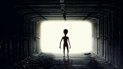 Chuyên gia nhận định sốc về viễn cảnh người ngoài hành tinh xâm lược Trái đất