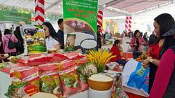 Hà Nội tăng tốc phát triển vùng và chuỗi sản xuất rau, thịt an toàn