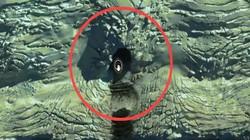 Xem Google Maps phát hiện hang bí mật ở Nam Cực, 6 tháng sau bỗng dưng biến mất