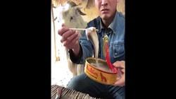 """Chàng trai chăn dê với loạt clip """"ăn cả thế giới"""" gây sốt"""