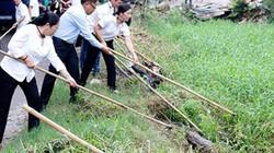 Nỗ lực nhiều, môi trường nông thôn TP.HCM vẫn chưa như kỳ vọng
