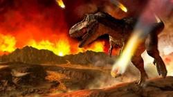 Trước khi thiên thạch rơi, khủng long đã chết hàng loạt vì nội tạng bị tàn phá?