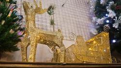 Tuần lộc vàng đính kim sa trang trí Noel hơn 2 triệu đồng/con vẫn hot