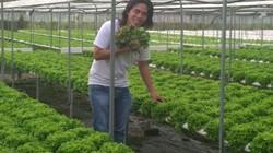 """Bỏ nghề """"củi lửa"""", trai trẻ Sài Gòn về trồng rau, làm giám đốc"""