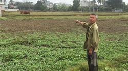 """Thanh Hóa: Hơn 200 ha đất nông nghiệp """"khát"""" trước vụ chiêm Xuân"""