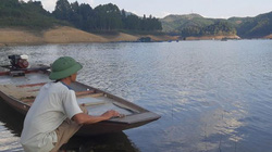 Dân nuôi cá đặc sản thấp thỏm cả đêm vì hồ Hòa Bình cạn kỷ lục