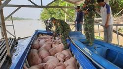 Bộ NNPTNT đề nghị doanh nghiệp không tiếp tay cho buôn lậu lợn