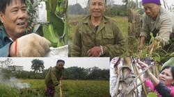 Nông dân Thủ đô nói gì về vụ án cựu bộ trưởng Nguyễn Bắc Son?