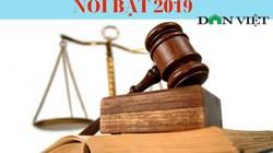 12 chính sách pháp luật quan trọng có hiệu lực năm 2019 (phần 1)