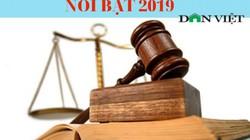 12 chính sách pháp luật nổi bật có hiệu lực năm 2019 (phần 2)