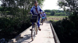 Run bần bật khi qua cầu Bàu Sen ở Quảng Trị