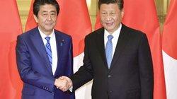 Thái độ khác lạ của ông Tập khi gặp Thủ tướng Nhật Bản