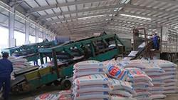 Supe Lâm Thao đẩy mạnh sản xuất, tiêu thụ phân bón dịp cuối năm