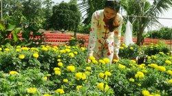 Kiên Giang: Cả làng trồng hoa kiểng bán Tết, có hộ bỏ túi 100 triệu
