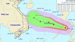 Mới nhất: Cơn bão số 8 Phanfone đã vào Biển Đông, vẫn giật cấp 14