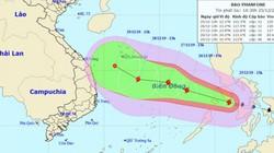 Cập nhật tin bão số 8 Phanfone: Cách Song Tử Tây 500km, giật cấp 14