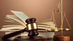 Doanh nghiệp có được tham gia lĩnh vực luật sư, công chứng?