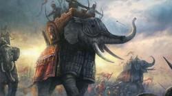 Tượng binh: Nỗi khiếp đảm của đế chế Ba Tư thời cổ đại