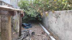 Hàng xóm tiết lộ 3 ngày Tết ăn chơi trác táng của nhóm sát hại nữ sinh giao gà