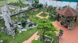 """Khu vườn trồng toàn cây """"khủng"""" và lâu năm của đại gia Hà Nội"""