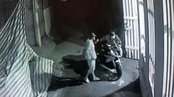 Camera ghi hình nhóm nam nữ táo tợn cắt khóa tiệm vàng, trộm xe BMW