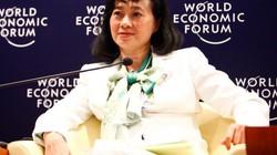 Tân Tạo của bà Đặng Thị Hoàng Yến nợ thuế 112 tỷ đồng