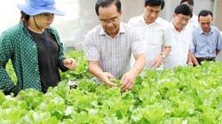 """Long An: Quỹ Hỗ trợ nông dân """"rót"""" nhiều tỷ đồng cho NN CNC"""