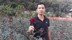 Lên núi trồng hoa tình yêu, trai Hà Nội thu bộn tiền dịp Tết