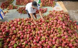 Bất chấp khuyến cáo, nông sản vẫn ùn ùn chở lên cửa khẩu