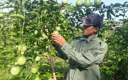 Hội Nông dân Lai Châu xứng đáng là điểm tựa của nông dân