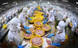 Doanh thu xuất khẩu Vĩnh Hoàn (VHC) tháng 9 tăng 18% so với cùng kỳ
