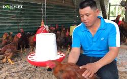 Chàng trai trẻ ở Khánh Hòa thu nhập tiền tỷ nhờ nuôi gà, nuôi heo