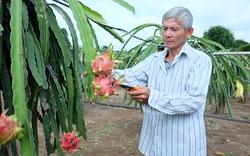 Đồng Nai: Hơn 80 tỷ đồng vốn Quỹ Hỗ trợ nông dân trợ lực cho sản xuất, chăn nuôi