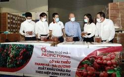 Hợp tác chuyển đổi hệ thống lương thực, thực phẩm bền vững