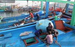Gỡ thẻ vàng IUU vào năm 2022, Bộ NNPTNT đề nghị chấm dứt ngay việc tàu cá vi phạm vùng biển nước ngoài