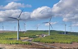 11 nhà máy điện gió được công nhận vận hành thương mại COD