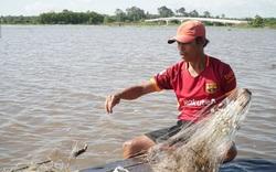 Mùa nước nổi ở Tây Ninh: Nông dân giăng lưới bắt cá đồng, cua đồng, hái rau đồng mưu sinh