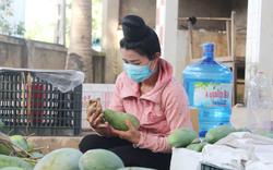 Lần đầu tiên Bộ NNPTNT xây dựng 5 vùng nguyên liệu nông, lâm sản khổng lồ lên tới 158.300ha