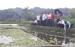 Thái Nguyên: Bổ sung vốn Quỹ Hỗ trợ nông dân, giúp nông dân làm giàu