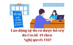Lao động tự do có được hỗ trợ do Covid–19 theo Nghị quyết 116?