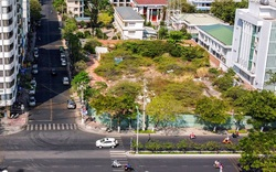 ''Đất vàng'' bỏ hoang la liệt ở Nha Trang