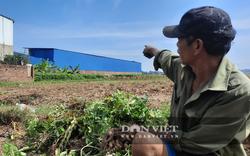 """Vĩnh Phúc: Xưởng sản xuất quy mô lớn mọc trên đất nông nghiệp trái phép, người dân """"tố"""" gây ô nhiễm"""