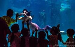 Cô gái kể chuyện làm nghề nàng tiên cá ở Singapore