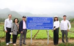 Đà Nẵng: Áp dụng khoa học công nghệ vào sản xuất, nông dân thắng lớn