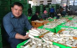 Một nông dân Việt Nam xuất sắc ở tỉnh Lâm Đồng tặng hơn 300 tấn rau củ cho nhân dân miền Nam
