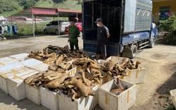 Kinh hoàng 1 tấn sản phẩm động vật đã bốc mùi hôi thối đang trên đường đi tiêu thụ thì bị bắt