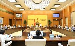 100% thành viên Ủy ban Thường vụ Quốc hội nhất trí thành lập thành phố Từ Sơn thuộc tỉnh Bắc Ninh