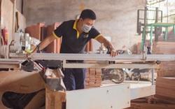 """Việt Nam sử dụng 50 triệu m3 gỗ làm ra sản phẩm đẹp bán khắp Âu - Mỹ nhưng toàn là """"nhà trồng được"""""""