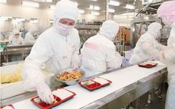 Xuất khẩu lao động Nhật Bản - Ngành chế biến thực phẩm lương cao, nhu cầu lớn